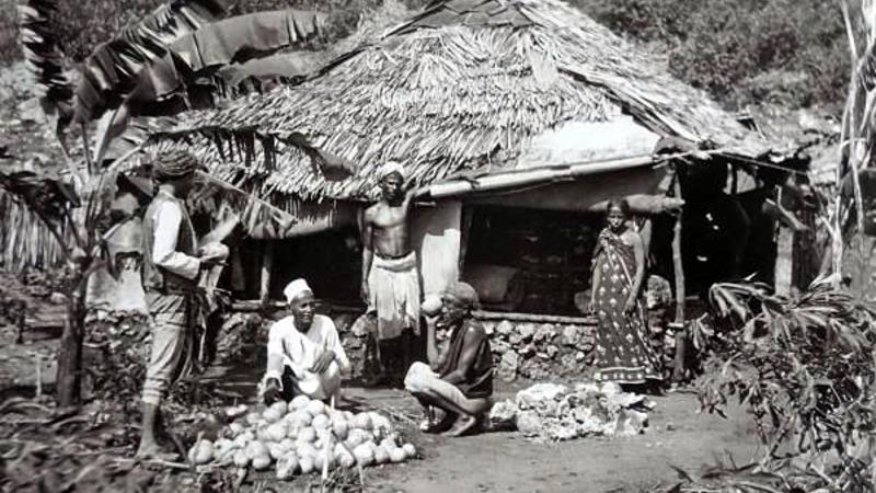 Un piccolo negozio a Changamwe, un sobborgo di Mombasa, che vendeva cocco fresco nel 1890