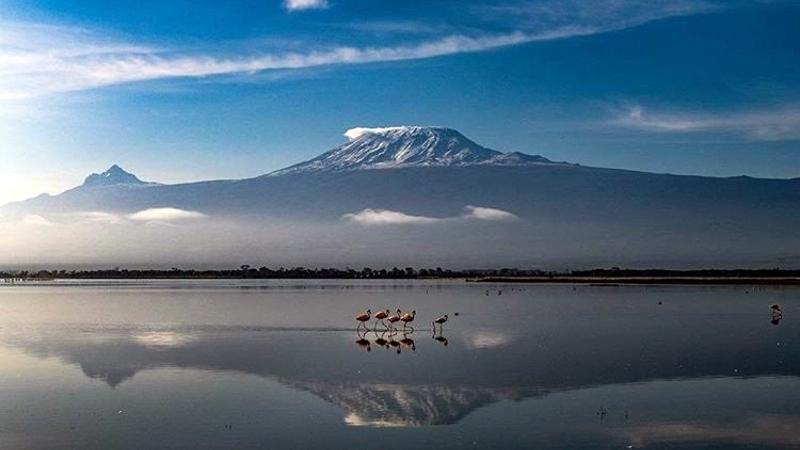 Parco Amboseli