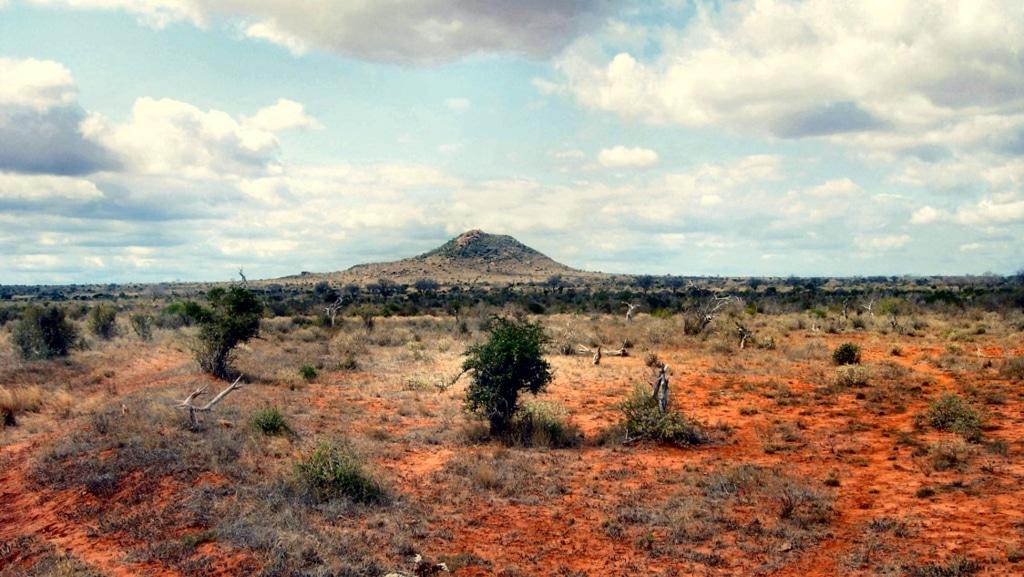Parco Nazionale Tsavo Est - Kenya