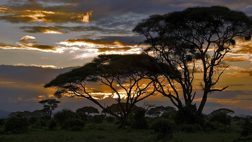 Tramonto nella savana - Kenya