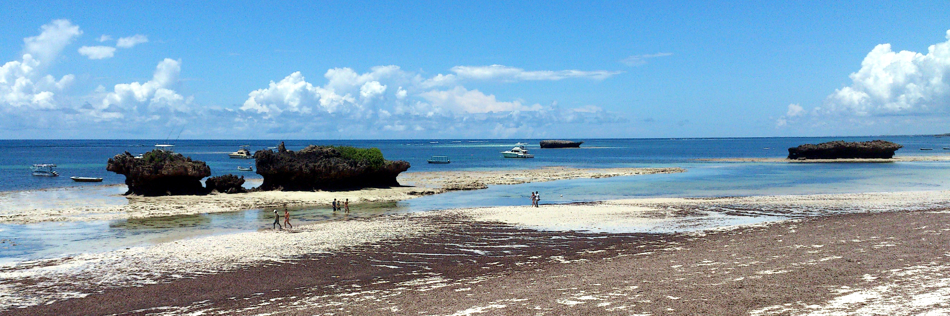 Panoramica Turtle Beach Watamu