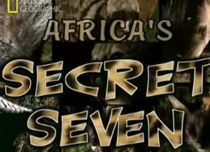 I sette animali segreti dell'Africa: Servalo, Porcospino, Gatto selvatico africano, Oritteropo, Zibetto africano, Pangolino, Genetta