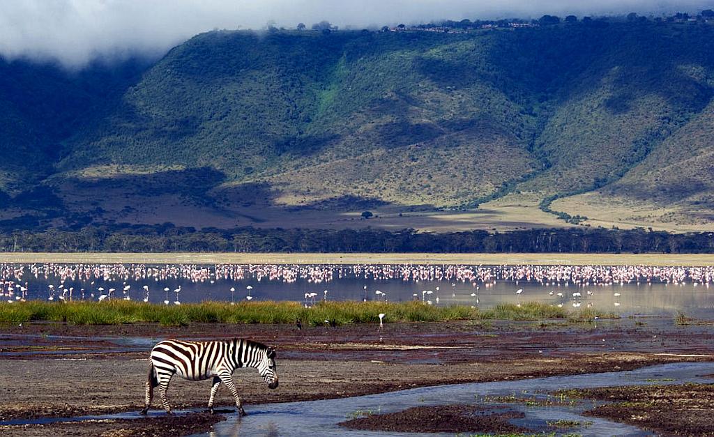 Ngorongoro Nature Reserve