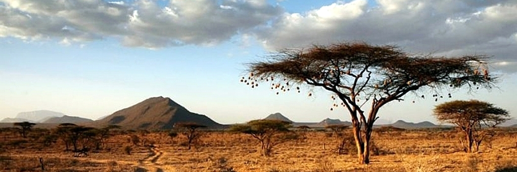 Preambolo Kenya Vacanze